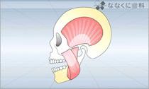 顎関節症(動画)